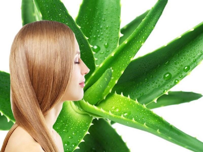 10 cách chống rụng tóc