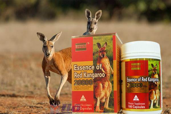 Essence Red Kangaroo