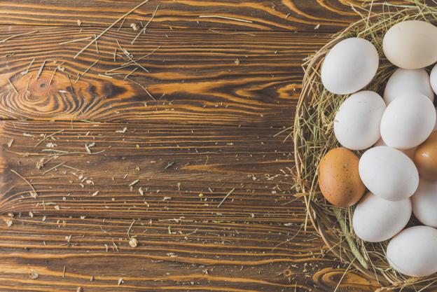 thành phần trứng gà