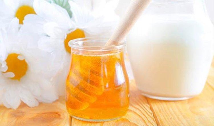 mật ong sữa chua
