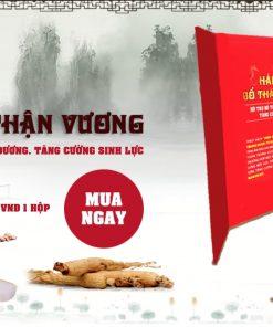 hai-sam-bo-than-vuong